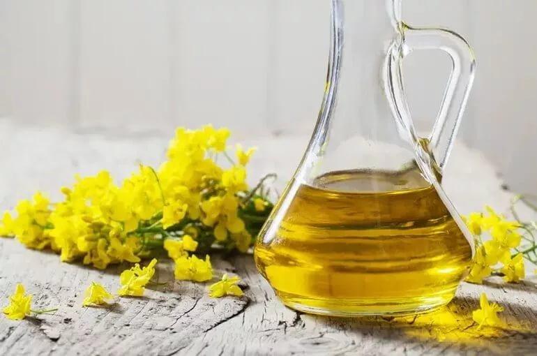 Рапсовое масло – польза и вред